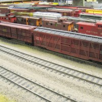 Cattle Cars Await Departure from East Yard