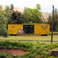 TTX boxcar and graffiti