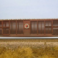 Northern Pacific Big Pig Palace Car