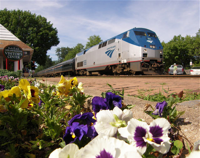 Amtrak and the flowers.