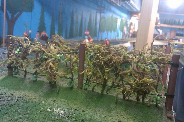 Scratch built grapes