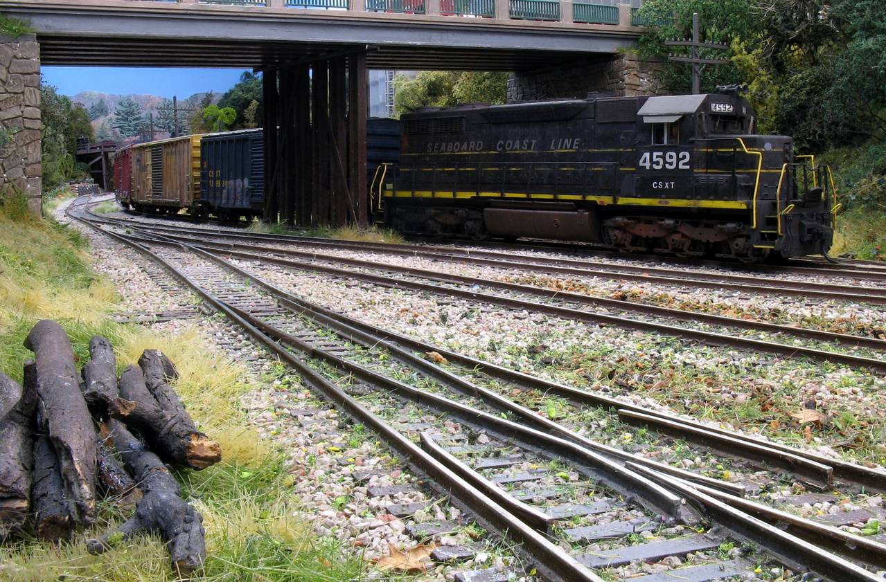 Weathered Locos And Freight Cars At Sweethome Alabama