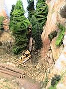 logging_1_008.JPG