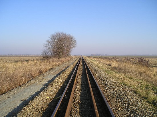 Rails in the middle of nowhere.